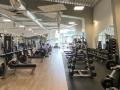 volnocasove-centrum-beauty-beast-velke-mezirici-wellness-i-fitness-i-posilovna-i-crossfit-i-sauny-i-kavarna-i-minigolf-i-projekt-a-realizace